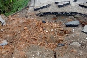 Restablecido tráfico automotor entre Fuentedeoro y Puerto Lleras tras atentado terrorista