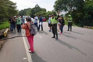 Detienen tránsito de vehículos para permitir paso de anaconda gigante