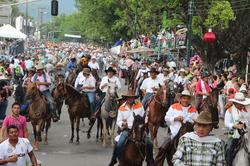Cabalgatas y caravanas no están prohibidas, pero deben someterse a la regulación de la alcaldía