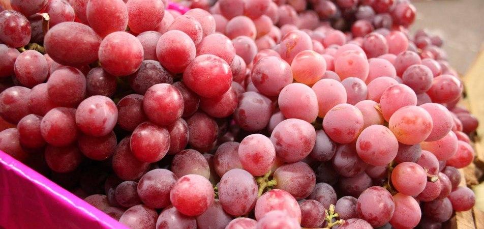 Propiedades curativas y medicinales de la uva