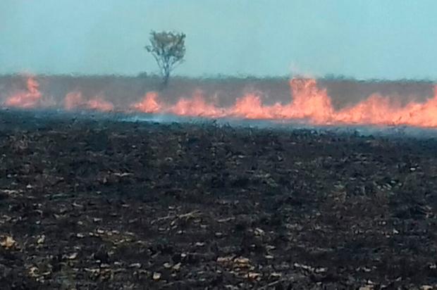 Incontrolable incendio en parque nacional El Tuparro en el Vichada