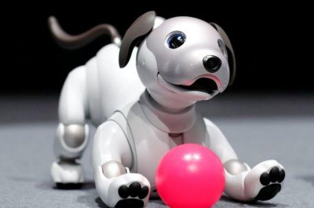 Sony enseña la nueva versión de Aibo, el perro robot