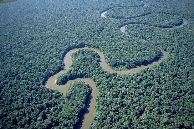 Naufragio en el río Orinoco