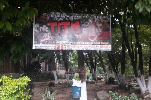 Se concerta suspender poda de árboles realizada en parque Los Titis