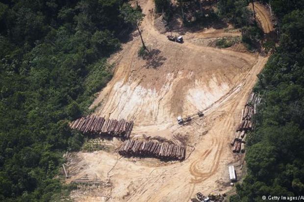 Aterciopelados y Bomba Estéreo luchan para proteger La Amazonía
