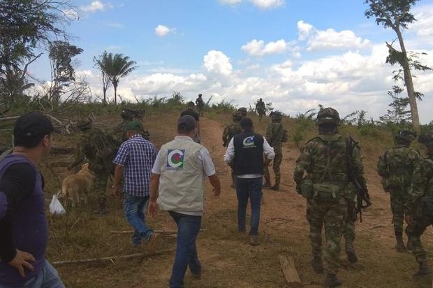 Operativo de monitoreo y control forestal en el municipio de Puerto Rico