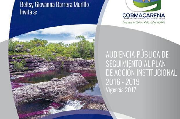 Cormacarena realizará Audiencia Pública de Rendición de Cuentas 2017