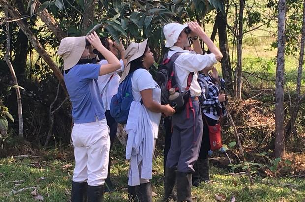 La Universidad Nacional de Colombia estudia especies en Chingaza