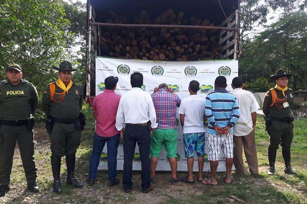 Capturados seis hombres por tala ilegal de árboles en Puerto Lleras, Meta