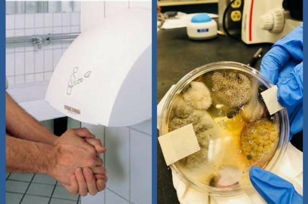 """""""Los secadores de manos de los baños son un nido de bacterias fecales"""""""