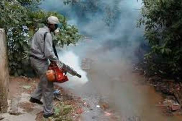 La fumigación no acaba con los zancudo del dengue: Expertos