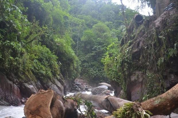 Geólogos en Bogotá estudian materiales de la zona de derrumbe del acueducto