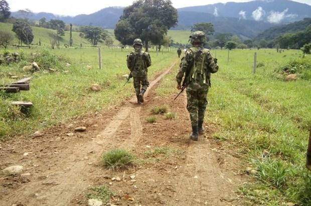 Positivo el balance general de seguridad en el Meta, Guaviare y Vaupés