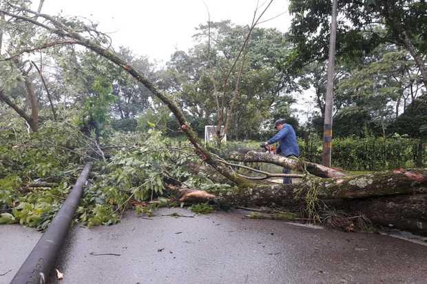 Desastres por fuerte vendaval en Villavicencio