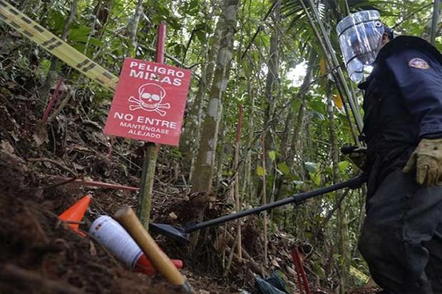 Villavicencio será declarada terrritorio libre de minas antipersona