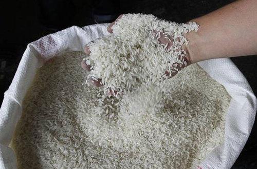Precios del arroz será el primer lío del nuevo Ministro del Agro