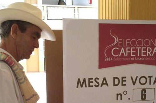 Se realizarán las elecciones cafeteras en 17 departamentos