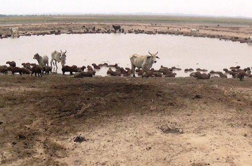 Ideam anuncia fuerte verano y sequía