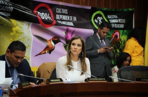 En Colombia  el 34% de las colmenas de abejas se han perdido