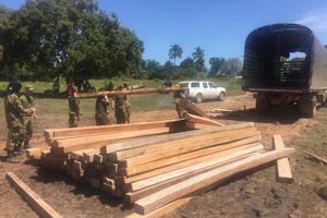 Contundente golpe al tráfico ilegal de madera en el Meta