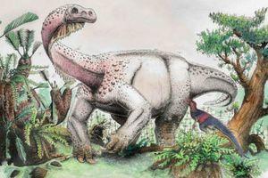 Descubren un nuevo dinosaurio que se paraba como un gato