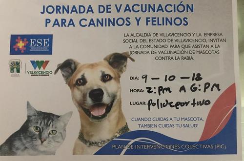 Jornada de vacunación para caninos y felinos contra la rabia