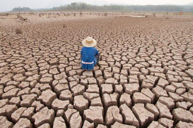 12 años tiene la humanidad para evitar el drástico cambio climático