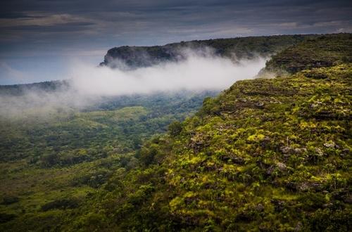 Sendero ecológico de la vía Vistahermosa- La Macarena, no está habilitado