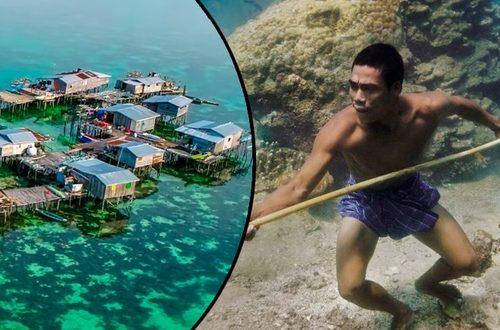Una tribu que puede sumergirse 60 metros bajo el mar. Conozca a los bajau