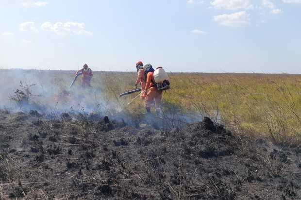 ¿Cuántas hectáreas se han quemado por incendios forestales en el Meta?