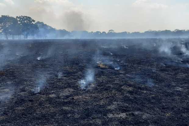 Cuántos incendios han ocurrido durante este 2020 en el Meta
