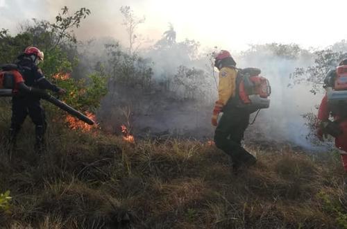 ¿Cuántas hectáreas destruyó el incendio en la sierra de La Macarena?