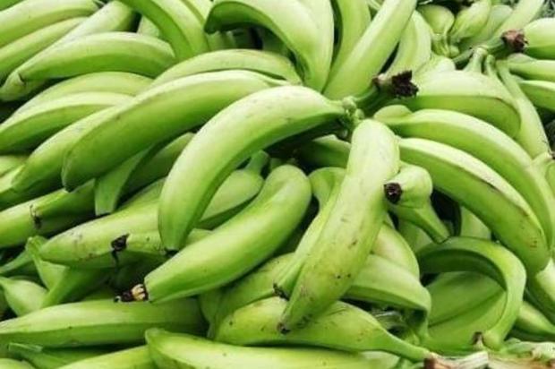 ¿Habrá beneficios y productos financieros para pequeños productores?