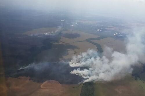 Intentan controlar incendio en Parque Nacional El Tuparro