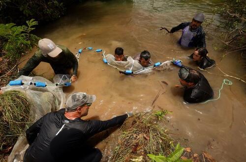 Avanza exploración científica en río Tillavá