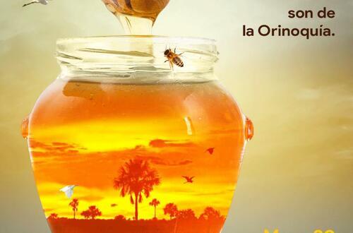 ¿En qué radica la importancia de las abejas?
