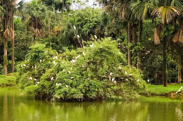 Humedales de Villavicencio pasan a manos públicas