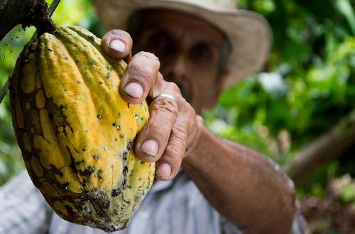 Bloqueos dejan 1,8 millones de empleos rurales en riesgo