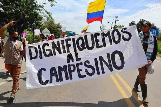 Campesinos de Meta y Guaviare denuncian hostigamientos