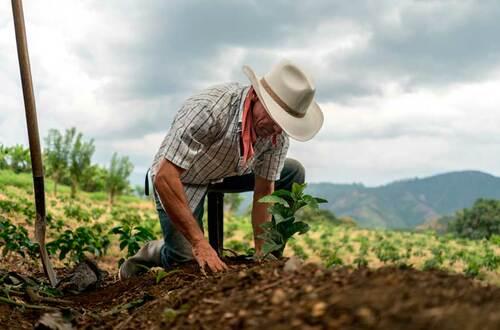 Productores agropecuarios podrán normalizar sus deudas