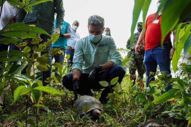 Miniambiente liberó especies silvestres en Meta
