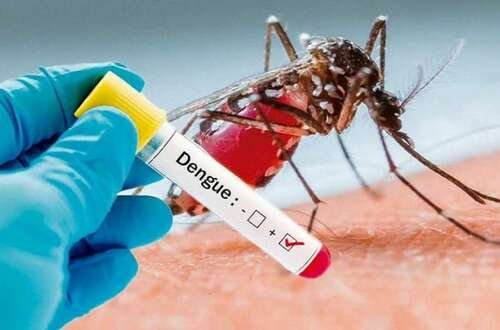 Dengue descendió en Villavicencio