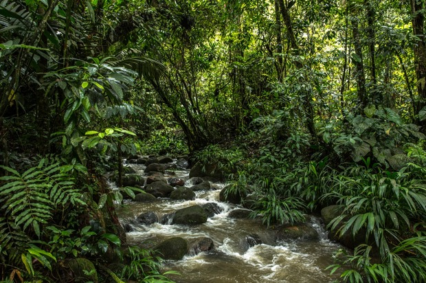 ¿Seguridad hídrica  para  Villavicencio y Acacías?