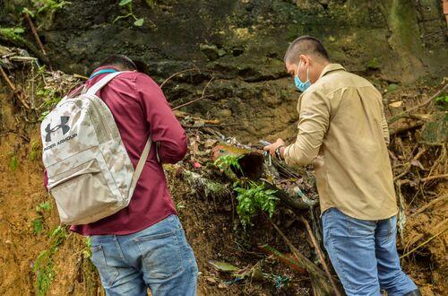 'Lluvia' de denuncias ambientales recibe Cormacarena